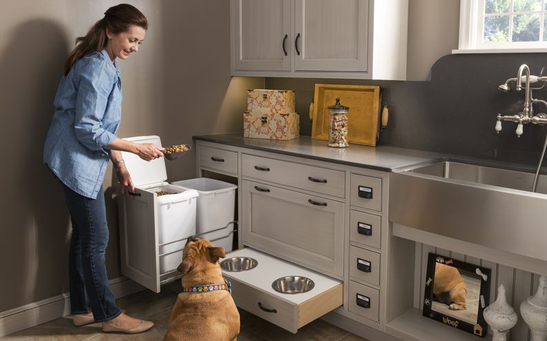 Creating a Pet-Friendly Area in Your Kitchen